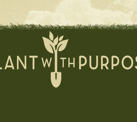 Education for Kids Around the World  : Plant with Purpose
