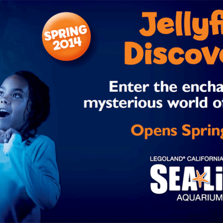SEA LIFE Aquarium : Jellyfish