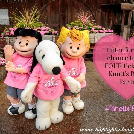 Knott's Berry Farm GIVEAWAY! Knott's for the Cure!