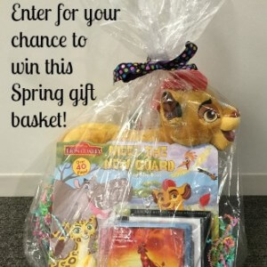 Lion Guard Gift Basket Giveaway