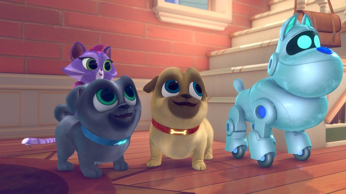puppy dog pals cat hissy