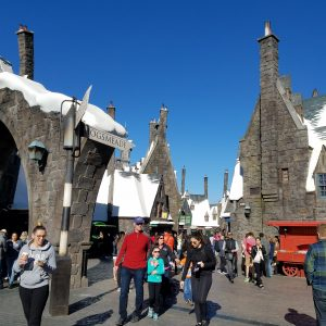 13 pictures that will make you want to drop everything and go to the Wizarding World of Harry Potter!