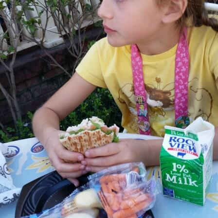 Healthy Options for Kids at Disneyland : Mickey Check Meals