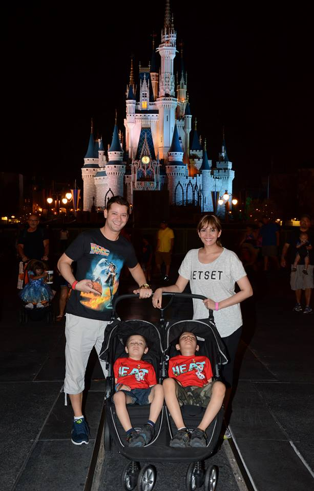 disney-wasted-castle