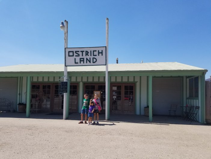 ostrichland is for families