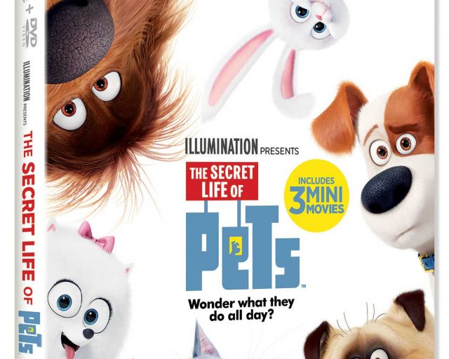secret life of pets giveaway