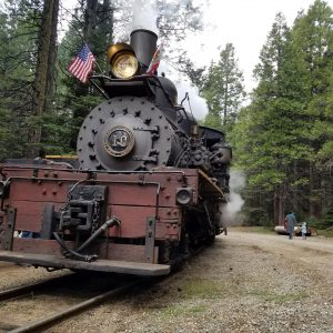 Yosemite Sugar Pine Railroad