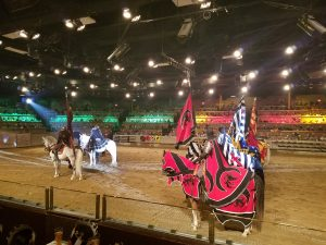 medieval times tournament show