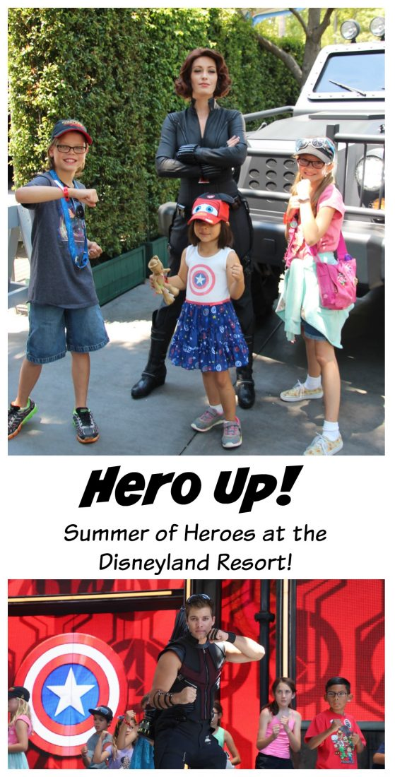 hero up at disneyland