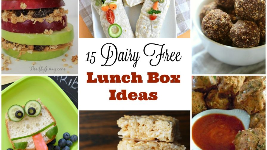 dairy free lunchbox ideas
