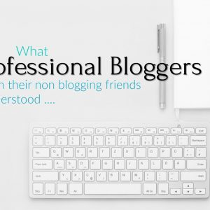 What Professional Bloggers wish their non blogging friends understood ....