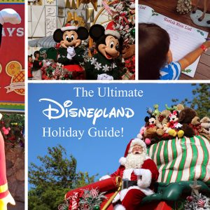 The Ultimate Disneyland Holiday Guide!