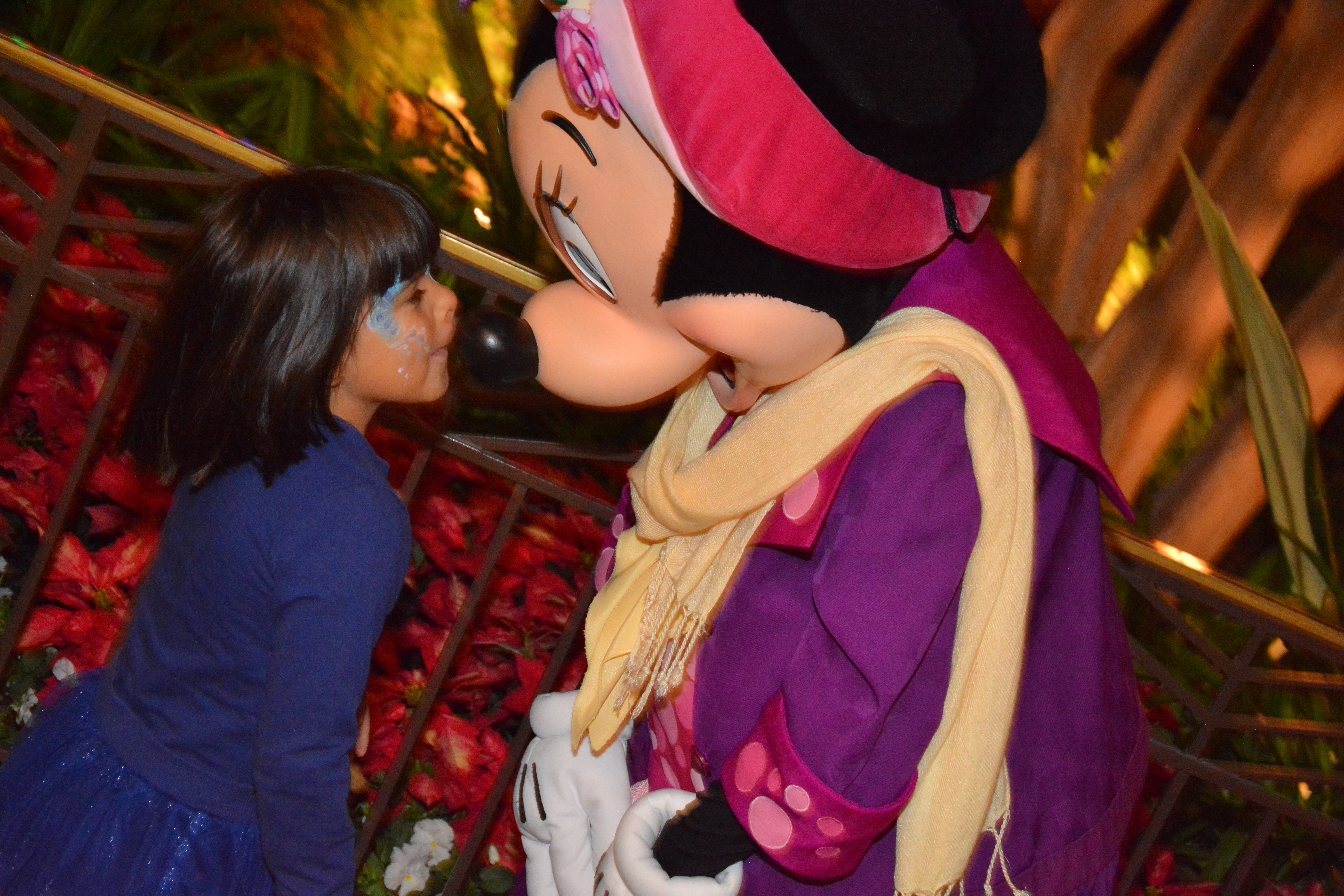 minnie mouse holidays