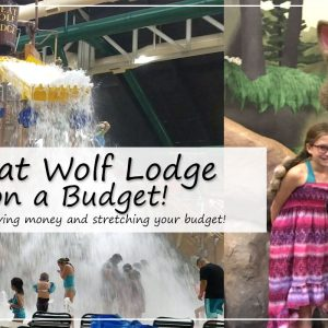 The Ultimate Money Saving Guide to Great Wolf Lodge