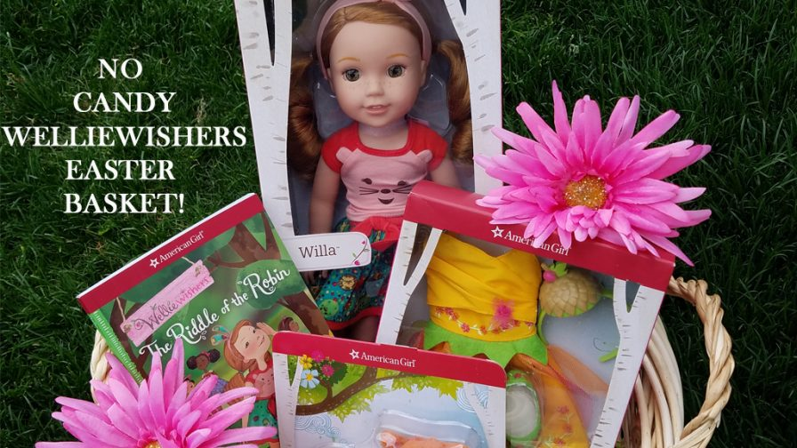 welliewishers easter basket no candy idea