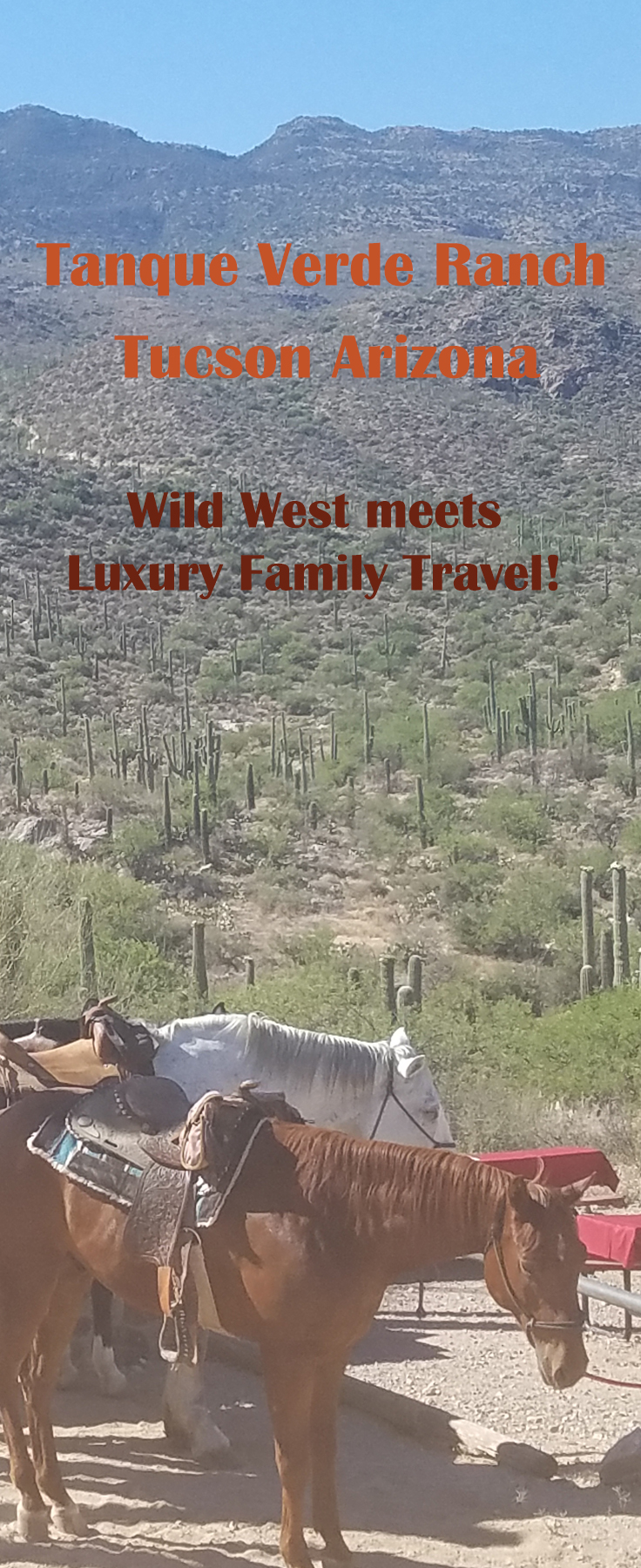 tanque verde ranch family