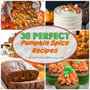 30 recipes for Pumpkin Spice lovers!